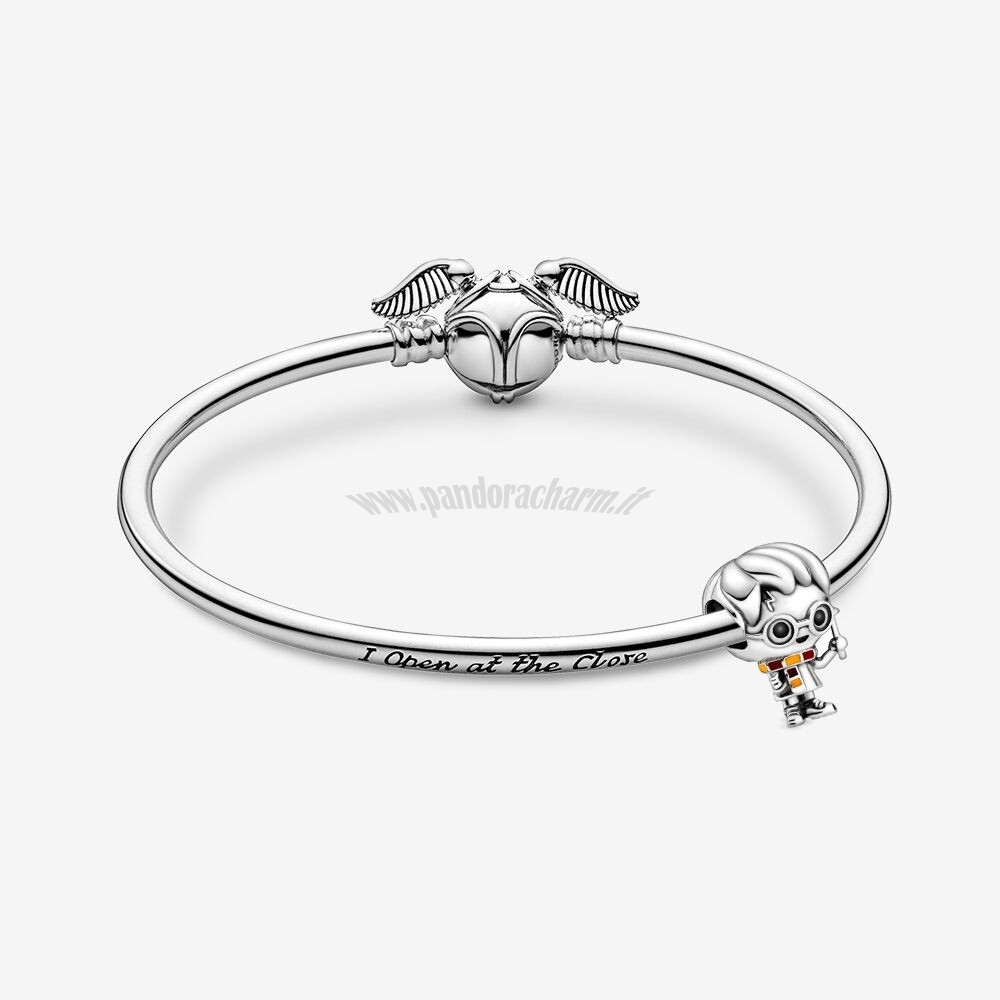 Crea Il Tuo Harry Potter, Harry Potter Bracciali pandoracharm