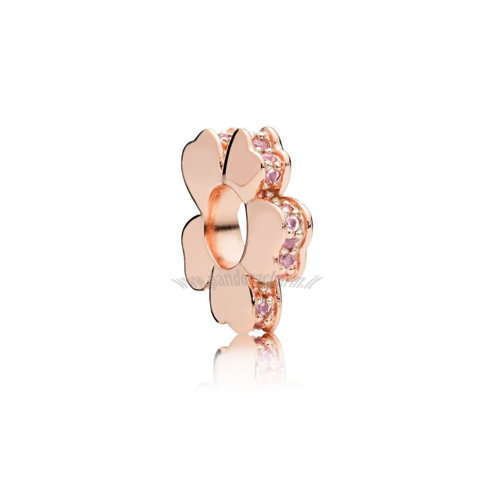 Crea Il Tuo Pandora 35.00 Rose Wildflower Prato Spacer Fascino pandoracharm